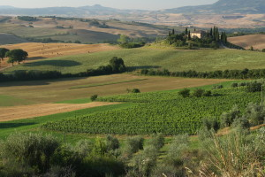 val-d-orcia-view