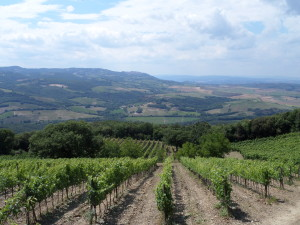 val d'orcia top ten wine enthusiast