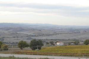 panorama vino orcia doc